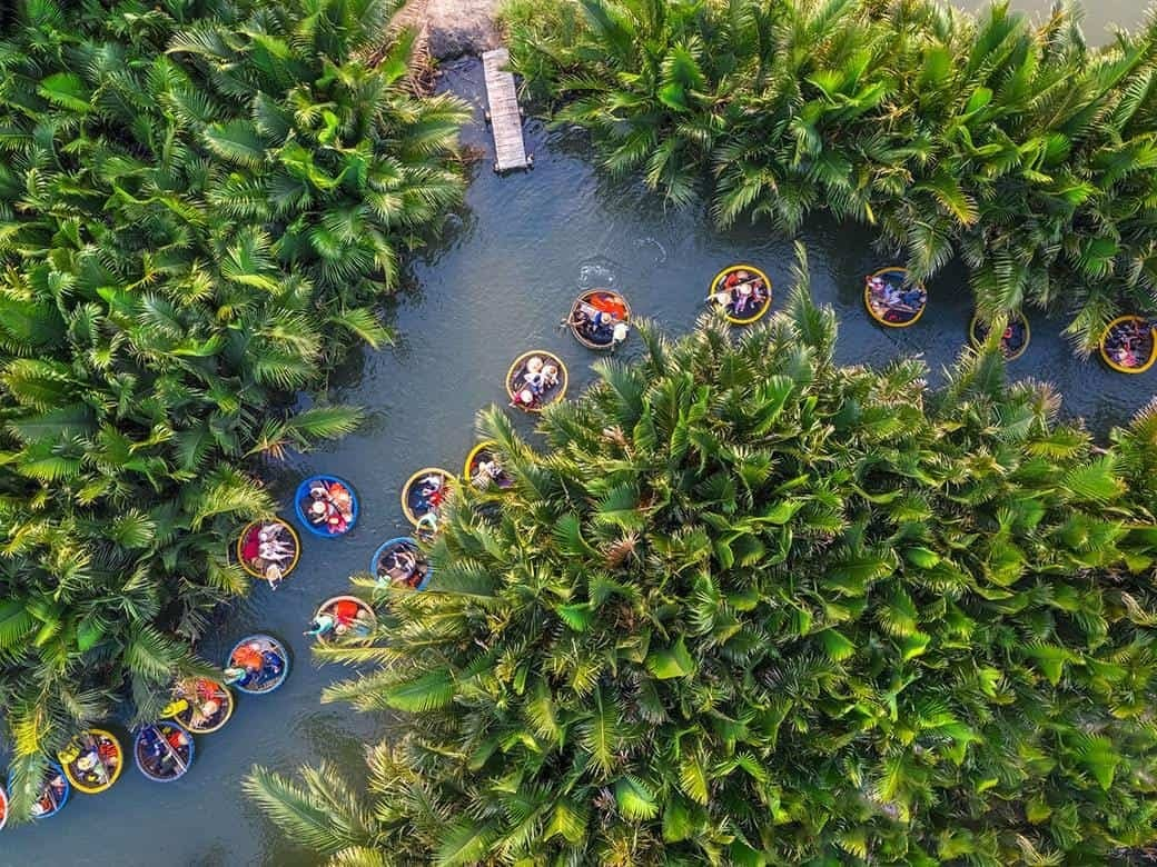Coconut forest Hoi An