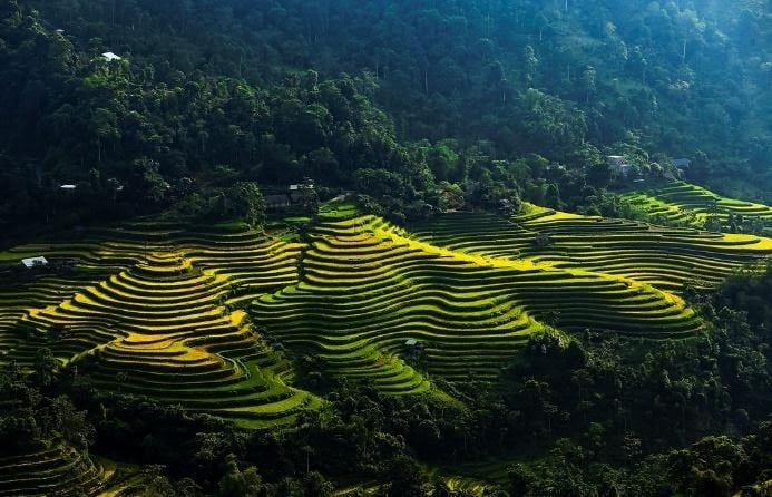 Things to do in Vietnam - Dong Van Karst Plateau